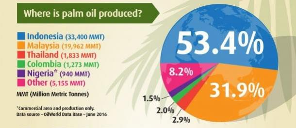 Where is palm oil produced