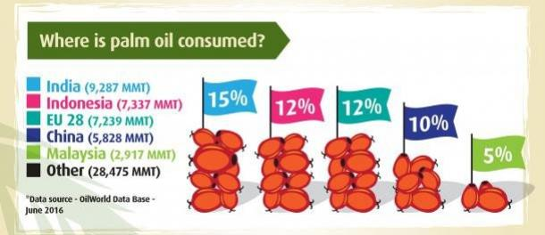 Where is palm oil consumed
